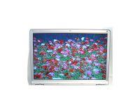 "Picture of Sony Vaio PCG-S 13.3"" Laptop LCD Display w/Case"