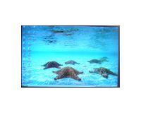 "Picture of AU Optronics B154EW01 V.6 15.4"" Glossy LCD Screen"